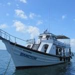 Koh Tao Diving boat