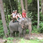 Elephant riding tours Thailand